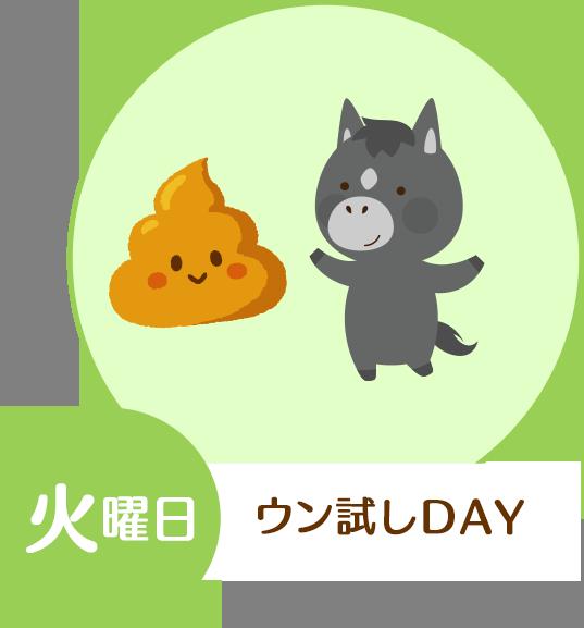火曜日・ウン試しDAY